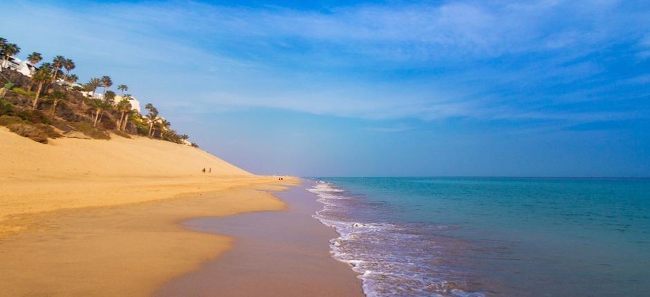 Julio y Agosto en Fuerteventura